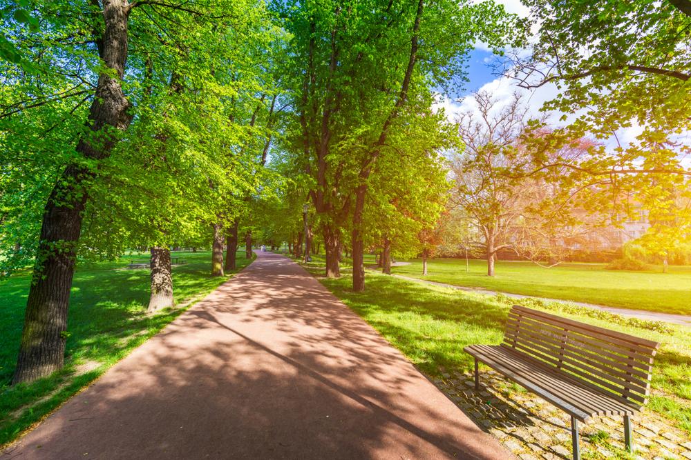 Letná park Praag Tsjechië