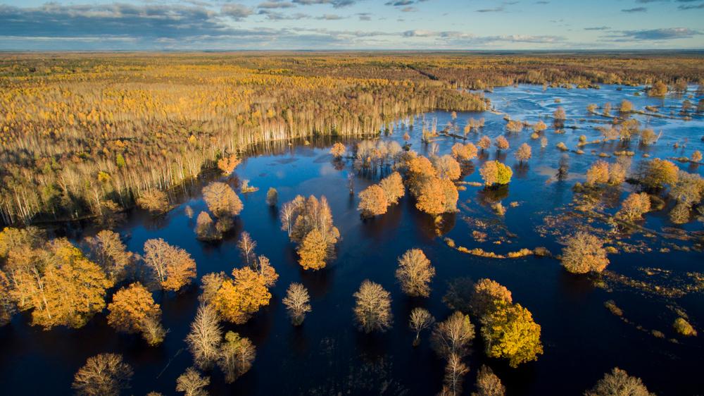 Nationaal Park Soomaa Estland