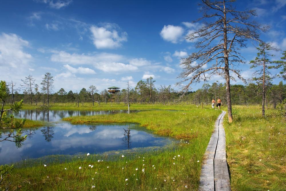Nationaal park Lahemaa Estland