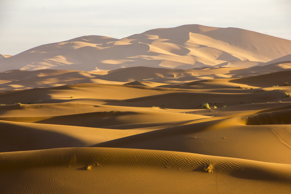 Erg CHebbi sahara Marokko
